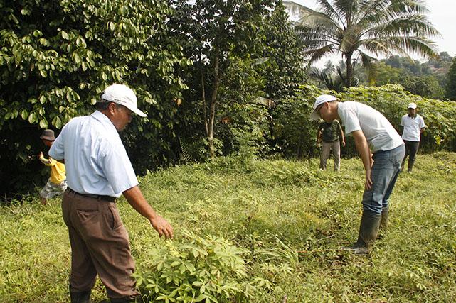 pendampingan petani